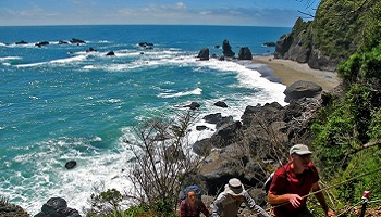 350x200_wilderness_moeraki4.jpg